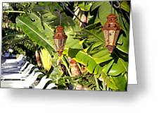Of Lanterns And Lawn Chairs Greeting Card