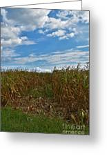 Of The Corn  Greeting Card
