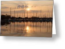 Of Yachts And Cormorants - A Golden Marina Morning Greeting Card