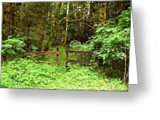 Off The Beaten Path Haida Gwaii Bc Greeting Card