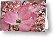 Office Art Prints Pink Flowering Dogwood Tree 1 Giclee Prints Baslee Troutman Greeting Card
