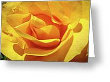 Office Art Prints Roses Orange Yellow Rose Flower 1 Giclee Prints Baslee Troutman Greeting Card