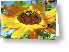 Office Art Prints Sunflowers Giclee Prints Sun Flower Baslee Troutman Greeting Card