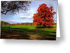 Oh Beautiful Tree Greeting Card