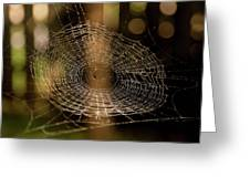 Oh What Tangled Webs.... Greeting Card