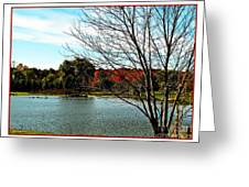 Ohio Duck Pond Greeting Card