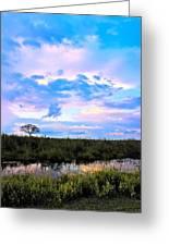 Okavango Sundowners Greeting Card