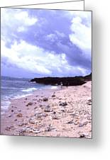 Okinawa Beach 15 Greeting Card