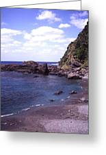 Okinawa Beach 5 Greeting Card