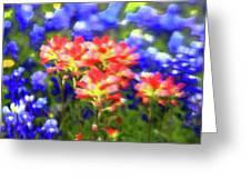 Oklahoma Wildflowers Greeting Card