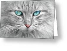 Ol' Blue Eyes Greeting Card