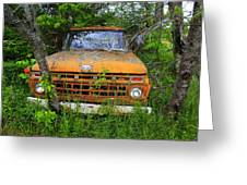 Old Abandoned Ford Truck In The Forest Greeting Card