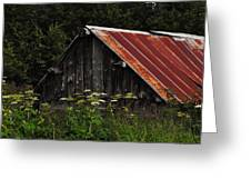 Old Alaskan Shed Greeting Card