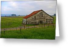 Old Barn In The Mustard Fields Greeting Card