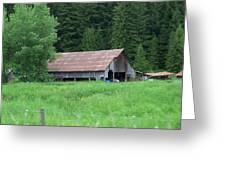 Old Barn In The Trees  Washington State Greeting Card