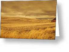 Old Barn In The Wheat Field Greeting Card