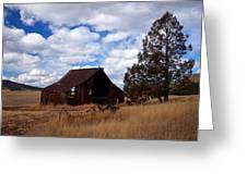 Old Barn Greeting Card