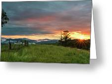 Old Beech Spring Sunset Greeting Card