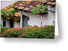 Old Buildings In Puerto Vallarta Mexico Greeting Card