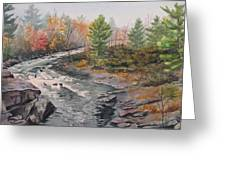 Old Burleigh Stream Greeting Card