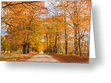 Old Coach Road Autumn Greeting Card