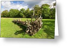 Old Cut Tree On A Meadow Greeting Card