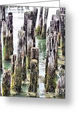 Old Dock Remains Greeting Card