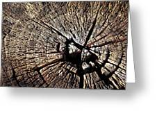 Old Dry Stump Greeting Card