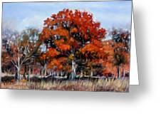 Old Fall Oak Greeting Card