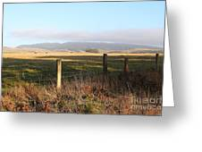 Old Fence And Landscape Along Sir Francis Drake Boulevard At Point Reyes California . 7d9965 Greeting Card