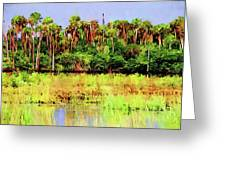 Old Florida Loop Palms Greeting Card
