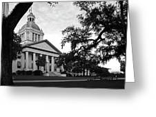 Old Florida State Capitol Building Greeting Card
