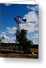 Windmill Color  Greeting Card