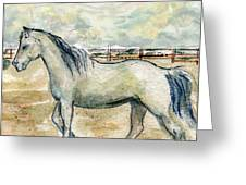 Old Gray Mare Greeting Card