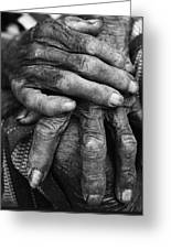 Old Hands 3 Greeting Card