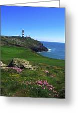 Old Head Of Kinsale Lighthouse Greeting Card