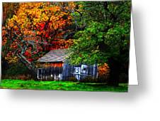Old Homestead And The Apple Tree Greeting Card