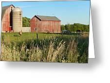 Old Horse Farm Greeting Card