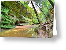Old Man's Gorge Trail And Caves Hocking Hills Ohio Greeting Card