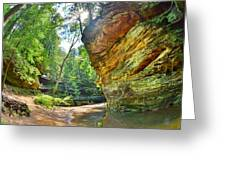 Old Man's Gorge Trail Hocking Hills Ohio Greeting Card