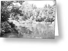 Old Michigan Creek Greeting Card