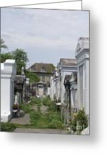 Old New Orleans Cemetery - The Big House  Greeting Card
