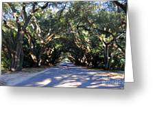 Old Oak Tunnel Greeting Card