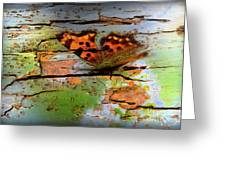 Old Paint On Wood Greeting Card