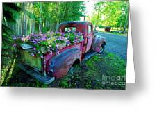 Old Pickup Truck As Flower Bed Greeting Card