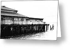 Old Pier Greeting Card