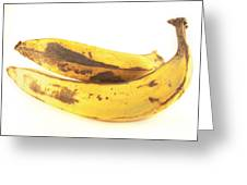 Old Plantain Greeting Card