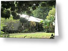 Old Plantation House Greeting Card