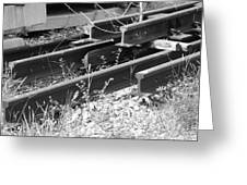 Old Rails Greeting Card
