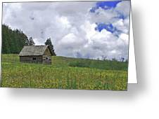 Old Ranchers Summer Cabin Redone Greeting Card